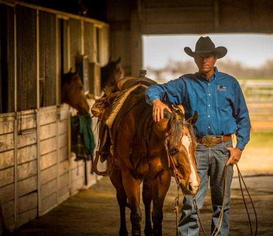 alex-meconi-craig-johnson-reining-horses