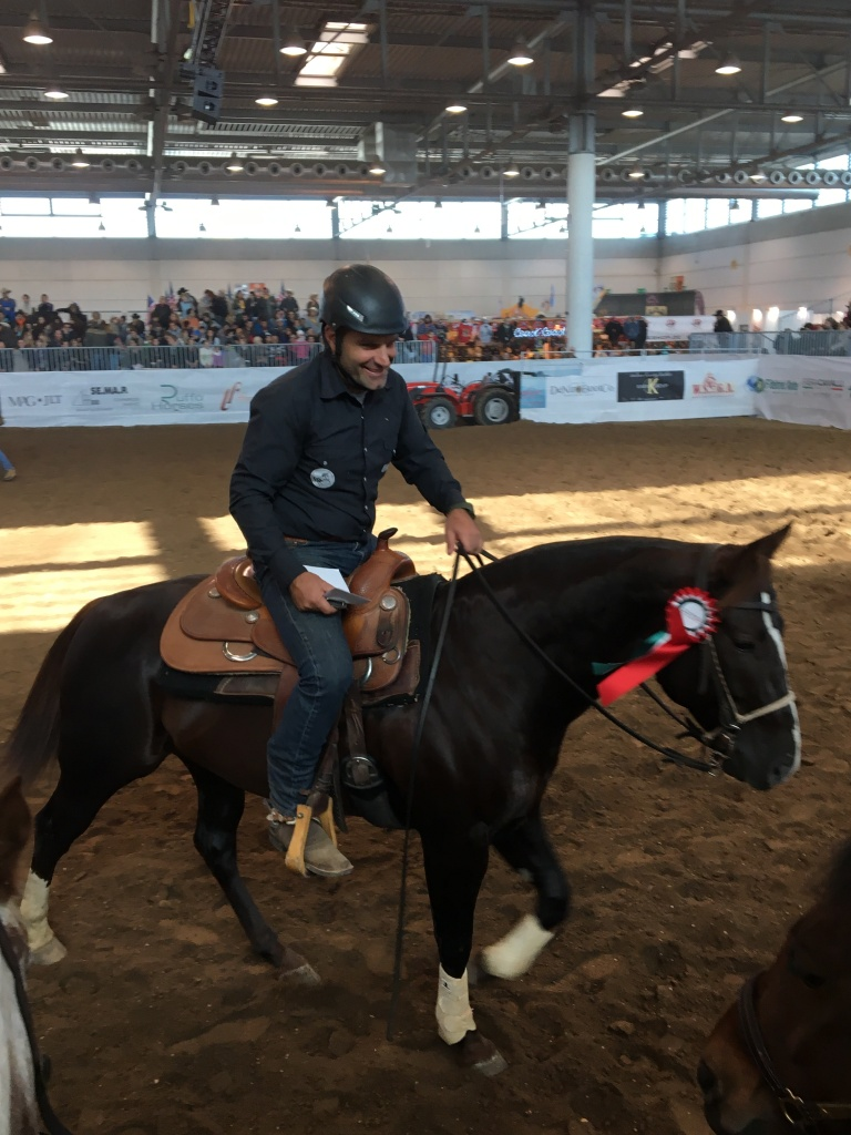 stallone-quarter-horse-peaceful-snapper-campione-italiano-gimkana-western-open