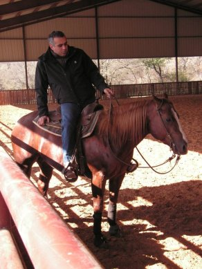 vittorio-rabboni-quarter-horse-sauro