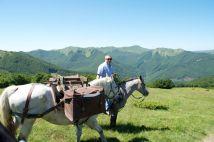 vittorio-rabboni-quarter-horse-trekking