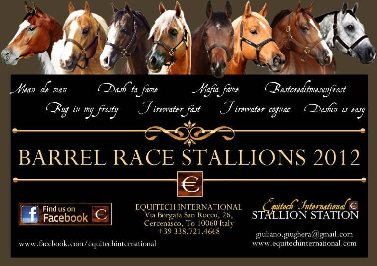 equitech-international-barrel-horses