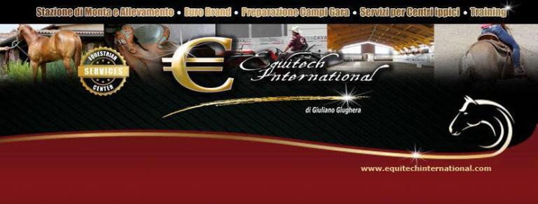 equitech-international-barrel-horses