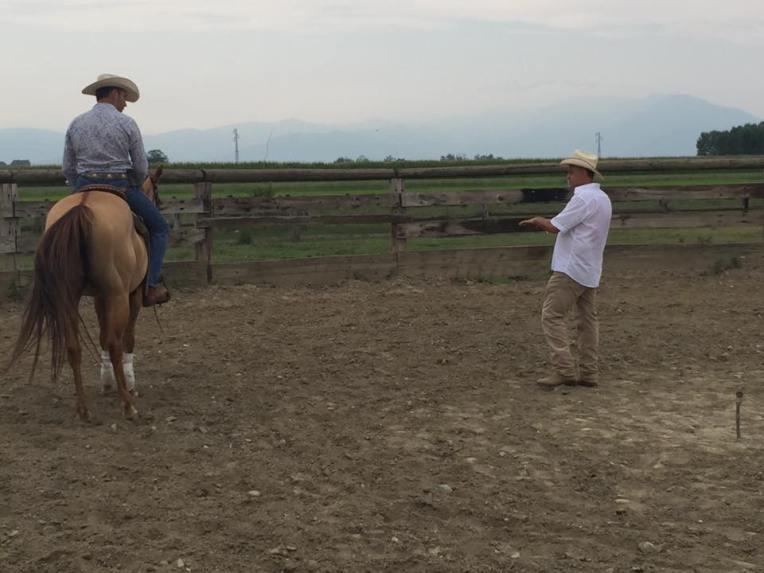 equitech-international-barrel-quarter-horses