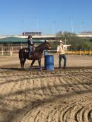equitech-international-lezioni-di-barrel-quarter-horses