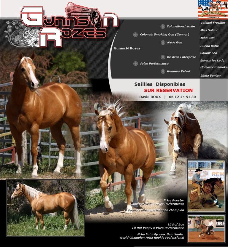 stallone quarter horse gunns n rozes.jpeg