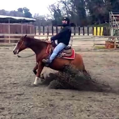 alex-meconi-super-star-yatt-castrone-quarter-horse-reining-sliding-stop-sx