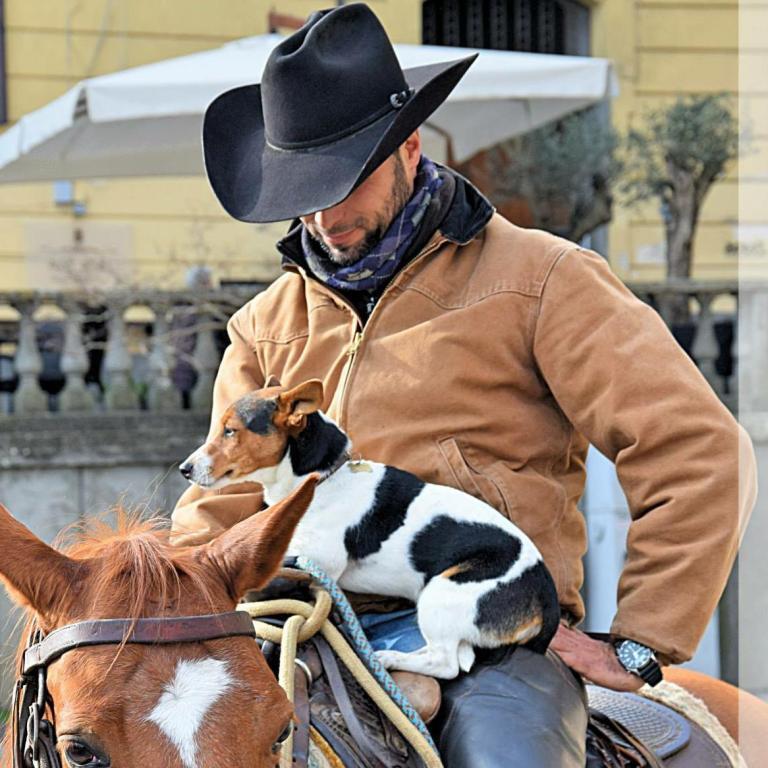 Andrea  Santini Cutting & Cow Horses.jpg