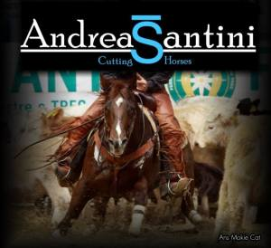 Andrea Santini Cutting & Cow Horses