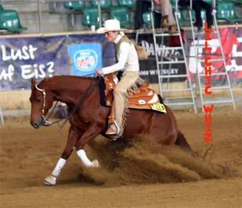 LIL CHIC WHIZ quarter horse mare