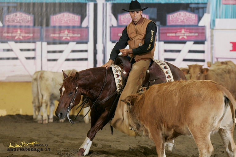 Stallone Quarter Horse ANS WYATT PEP (2002) Cutting and Working Cow Horse Champion