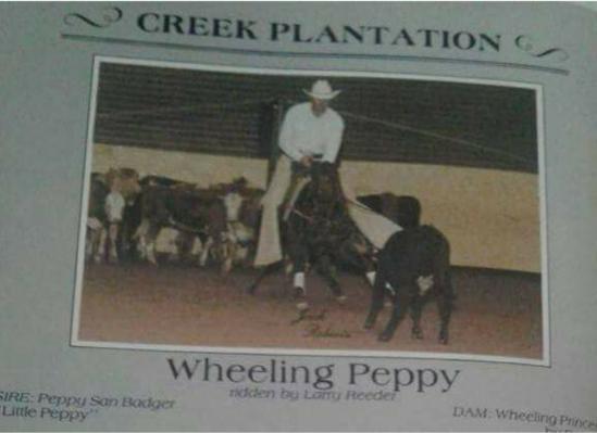 wheelingpeppy