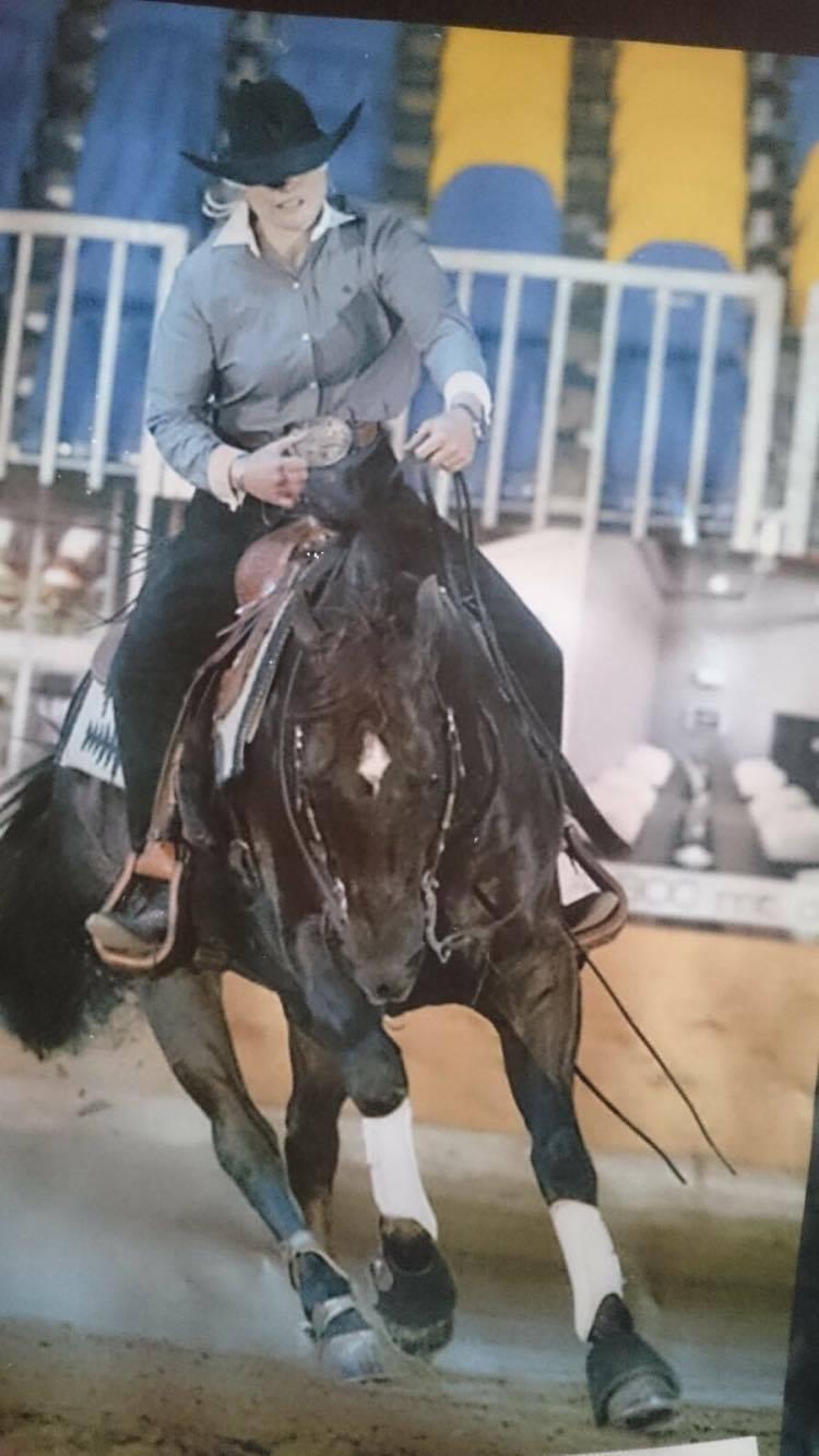 POWER SNAP reining AQHA Stallion