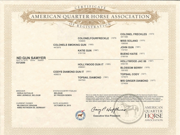 germany-reining-quarter-horse-stallion-at-stud-nd-gun-sawyer-2010-certificate-of-registration-aqha2.jpg