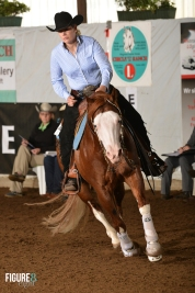 germany-reining-quarter-horse-stallion-at-stud-nd-gun-sawyer-2010 circle dx
