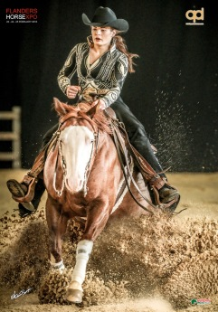 germany-reining-quarter-horse-stallion-at-stud-nd-gun-sawyer-2010 Gina Opitz