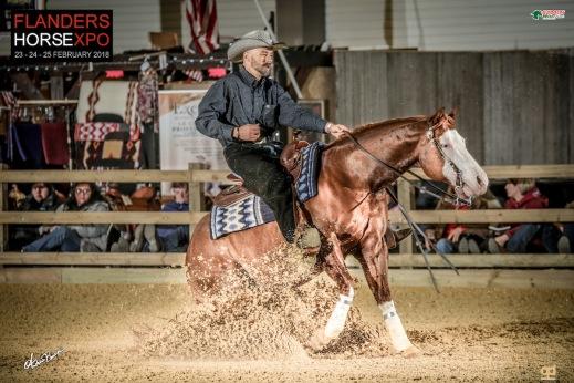 germany-reining-quarter-horse-stallion-at-stud-nd-gun-sawyer-2010 Rene Opitz