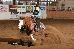 germany-reining-quarter-horse-stallion-at-stud-nd-gun-sawyer-2010 run