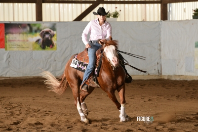 germany-reining-quarter-horse-stallion-at-stud-nd-gun-sawyer-2010 spin