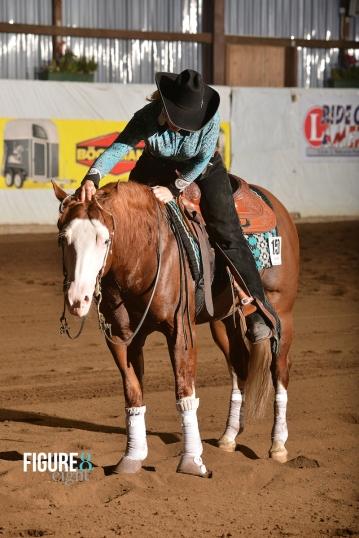 germany-reining-quarter-horse-stallion-at-stud-nd-gun-sawyer-2010