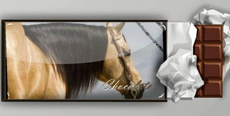 mr-chocolte-performance-quarter-horse-stallion-buckskin-promo.jpg