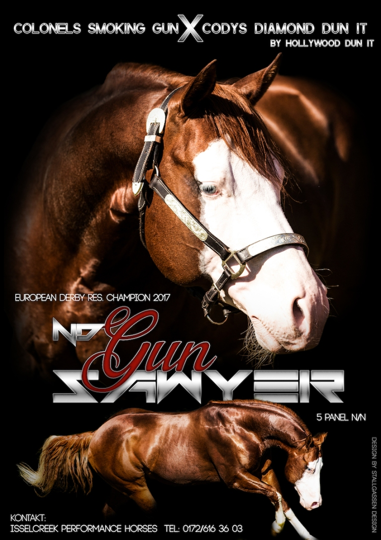 ND Gun Sawyer AQHA Stallion AD