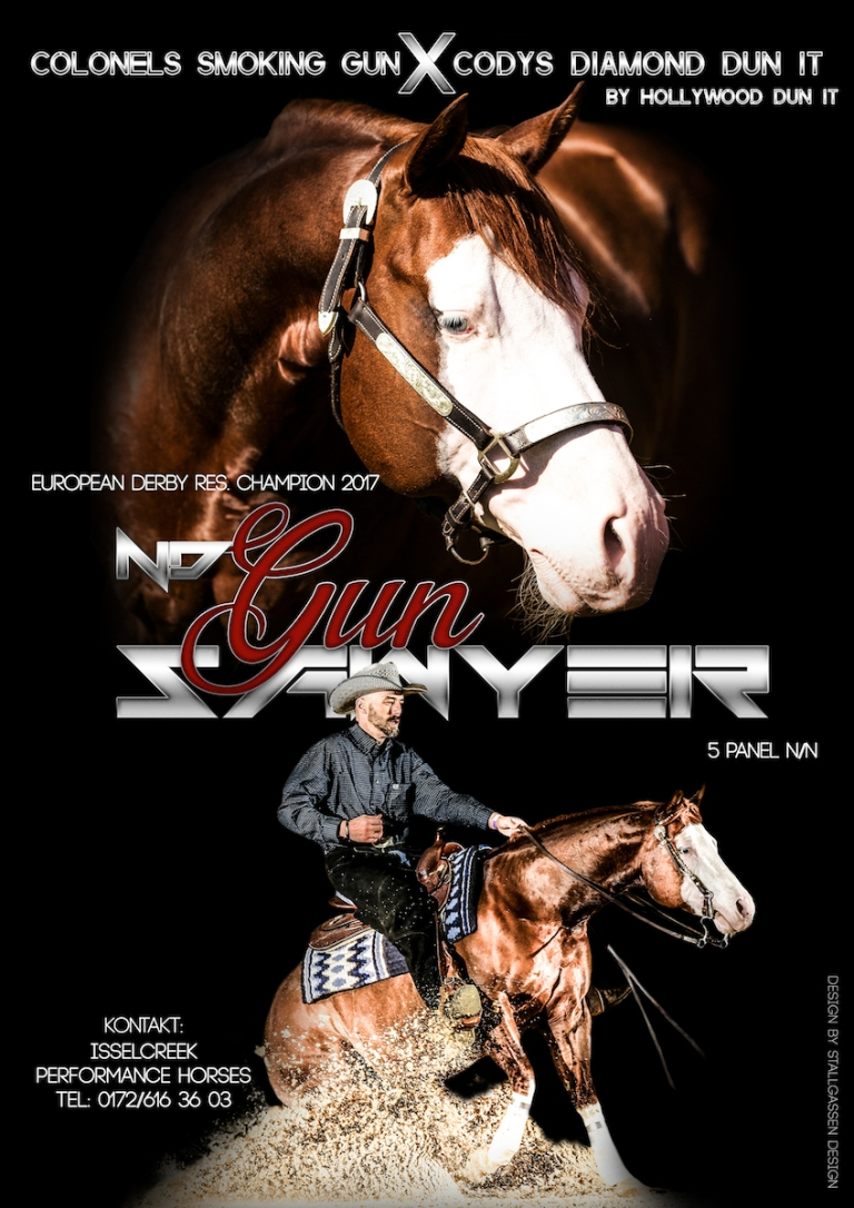 ND Gun Sawyer AQHA Stallion at stud AD