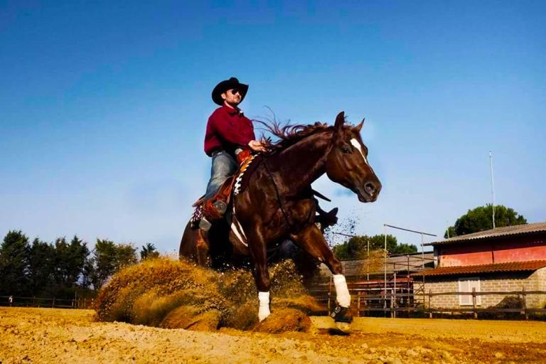 steppin-out-wrangler-stallone-sauro-reining-italia-1