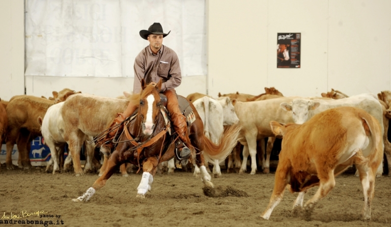 working cow AQHA 1997 SORREL STALLION TASSAS ARISTOCRAT SMART ARISTOCRAT x TASSA MIA (1).jpg