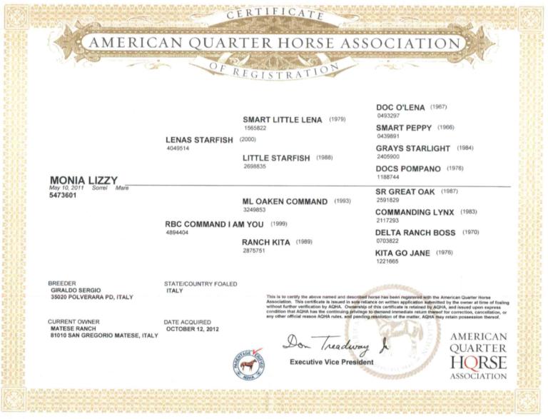 MONIA LIZZY Quarter Horse Mare (2011) In foal to TASSAS ARISTOCRAT certificate